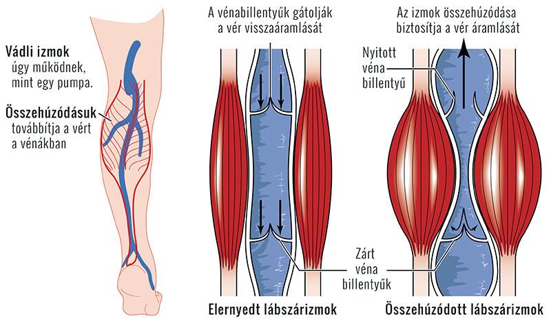 artrózis kezelése tatarstánban