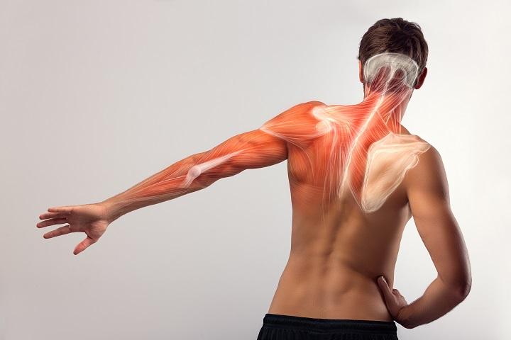 a vállízület kenőcsöveinek törése enyhíti a térd lábfájdalmát