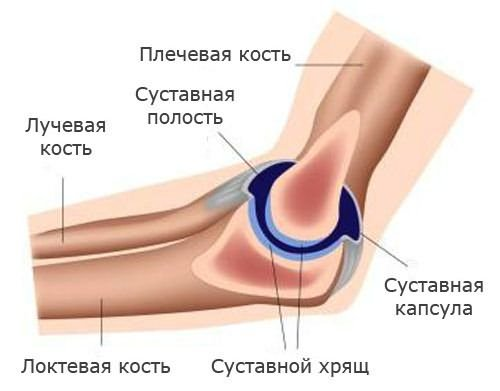 egy kar fáj a könyökízületben a mellkasi gerinc közötti csigolyák csontritkulása