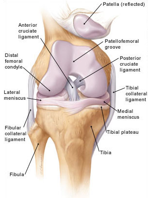 Egy héten belül megszüntetheti a térd izületi fájdalmát - EgészségKalauz