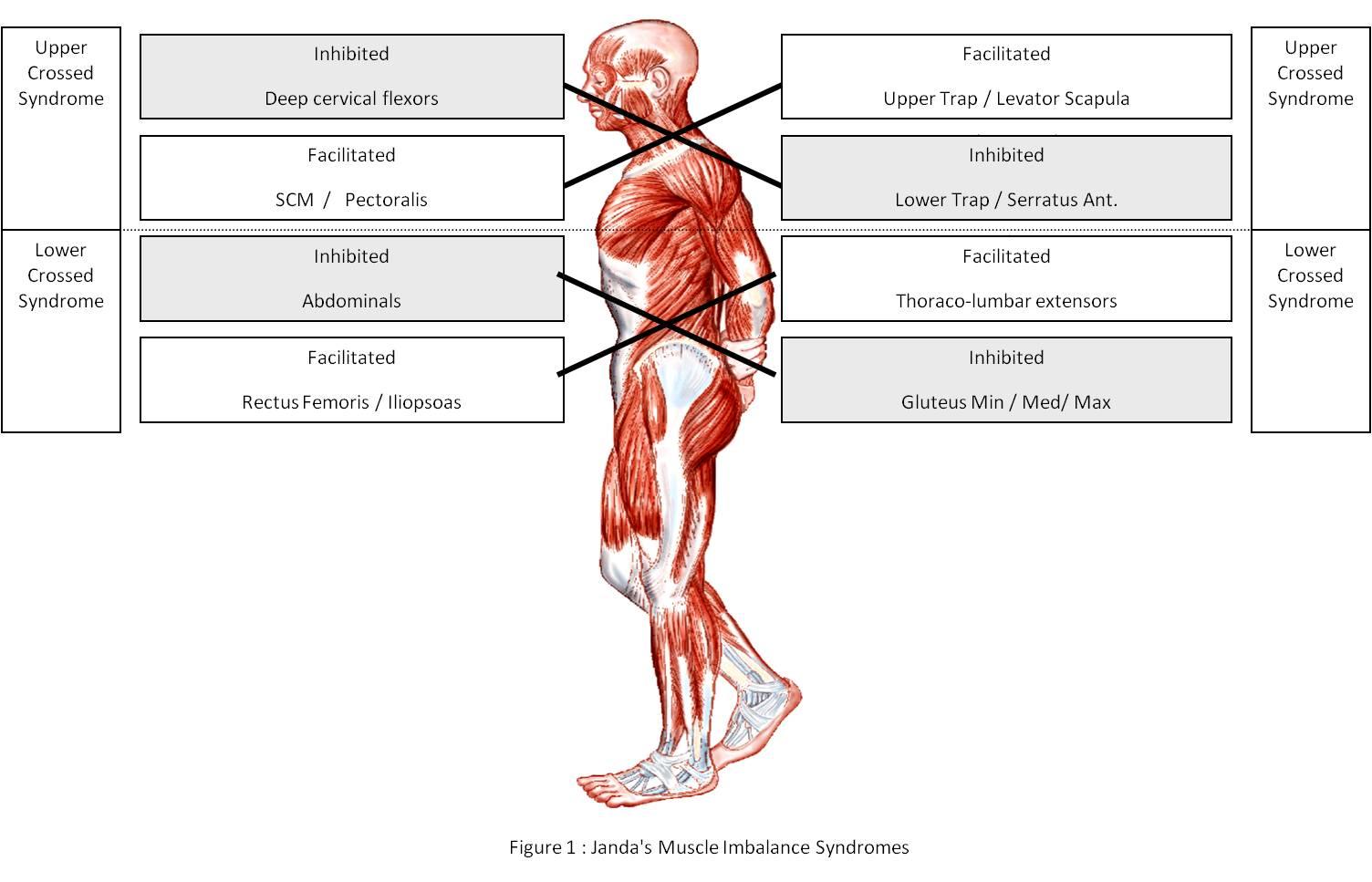 a csontkovács kezeli az artrózist