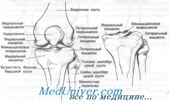 gyógyszerek hátfájás kezelésére