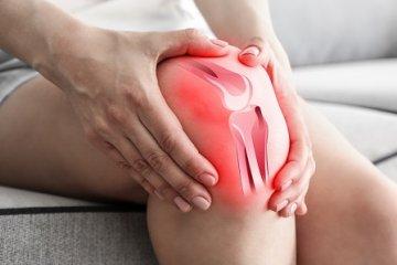 nyúl térd artrózisában van