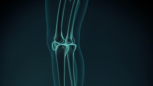 ízületi fájdalom 35 év alatt enyhítse a vállfájdalom kenőcsét