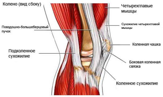 A térd ciszta meniszkuszja: a patológia teljes leírása - Arthritis July