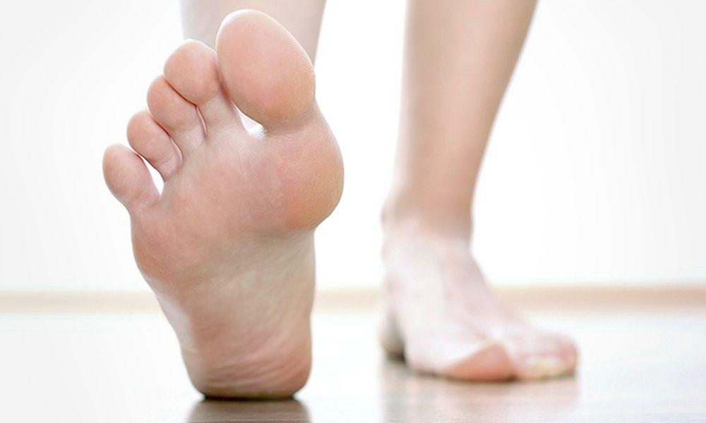 A láb felépítése - Podiart - Lábboltozat, izmok, erek, inak szerepe