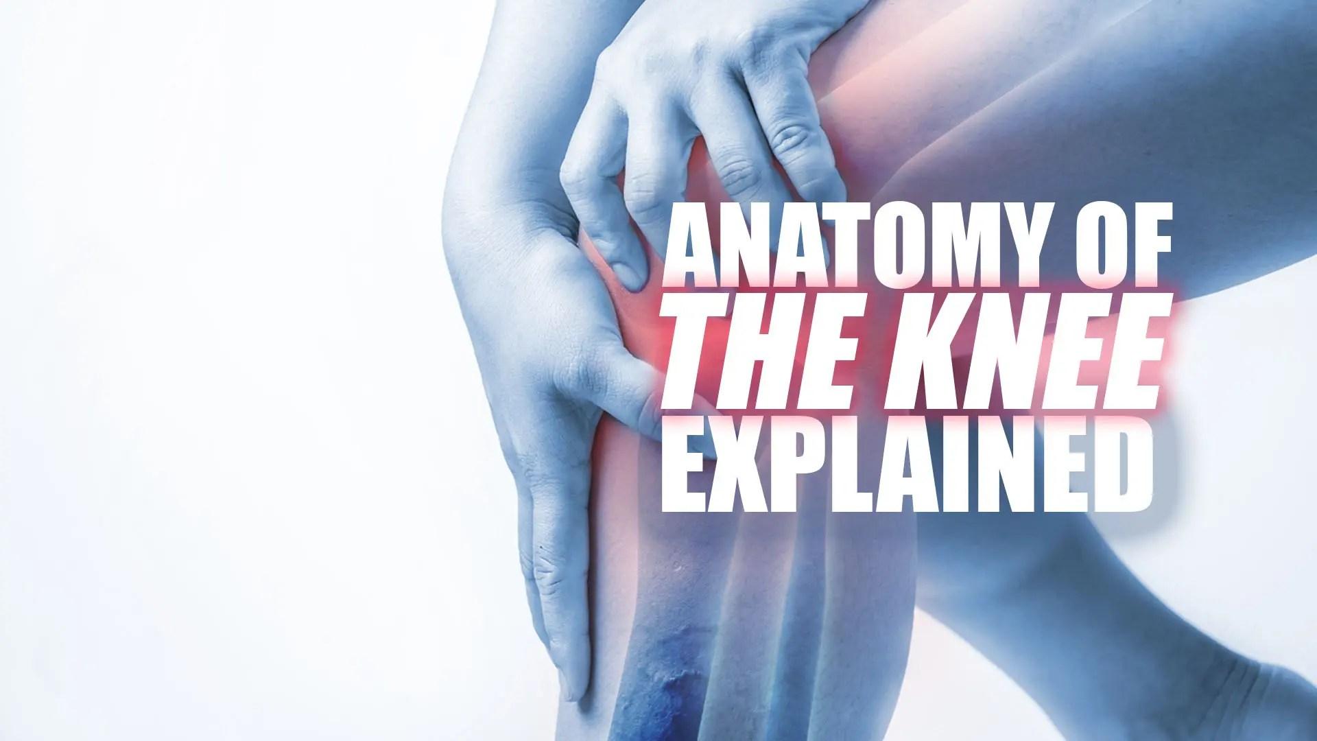 a térd medialis ligamentuma sérülései az ízületi fájdalom legerősebb gyógymódja