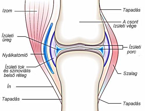 ízületi fájdalomcsillapító eszköz