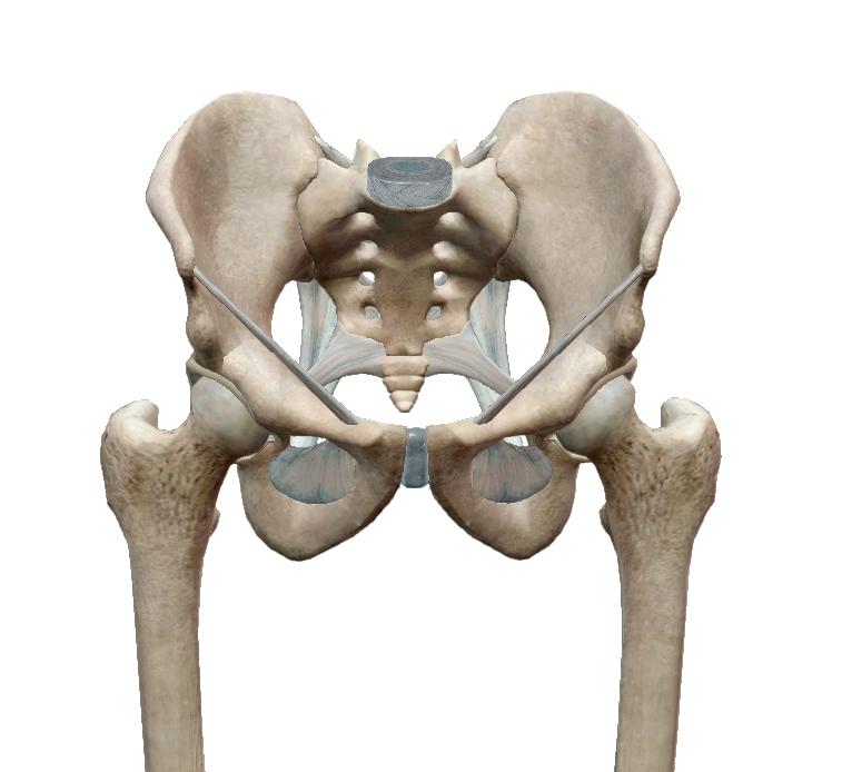 csípő alsó hátfájás domborzati ízületi kezelés