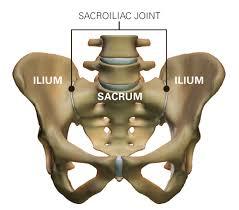 térd sclerosis kezelés a csuklóízület hány szalagja fáj