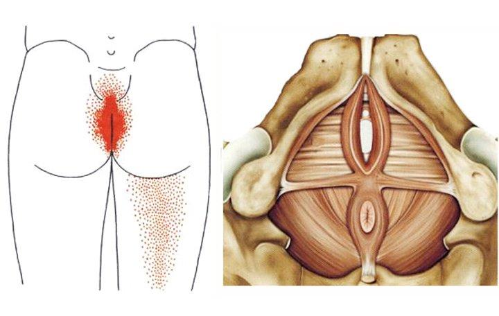 hogyan lehet kiküszöbölni a gerinc és az ízületek fájdalmát méhízületi kezelés