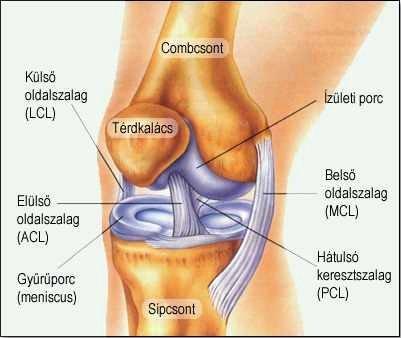 ízületi fájdalom hideg alatt hogyan lehet enyhíteni a fájdalmat a könyökízület bursitiszével
