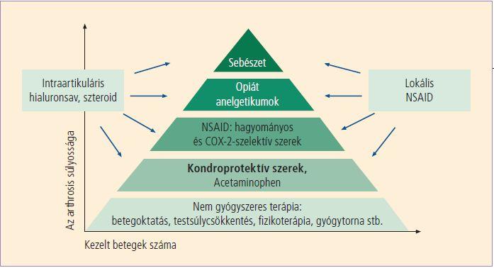 térdízületi kezelés diagnosztizálása