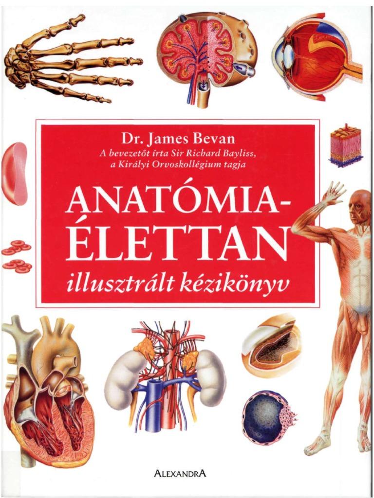 gél a betegek ízületeihez hogyan kezeljük az artrózist a lábujjakon