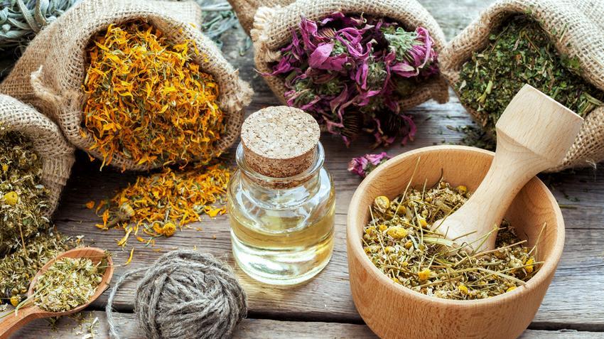 gyógynövények gyógyító ízületek fito készítmények ízületekhez