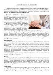 A globális keresési Education: Kullancsok – Megtörve a Transmission Cycle Lyme-kór