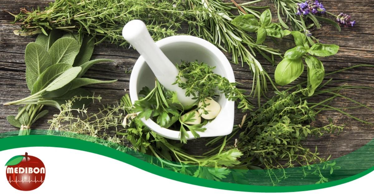 gyógynövények gyógyító ízületek ha fáj az ízület, hogyan kell kezelni