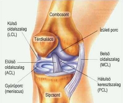 térdízületi tünetek és kezelési műtét