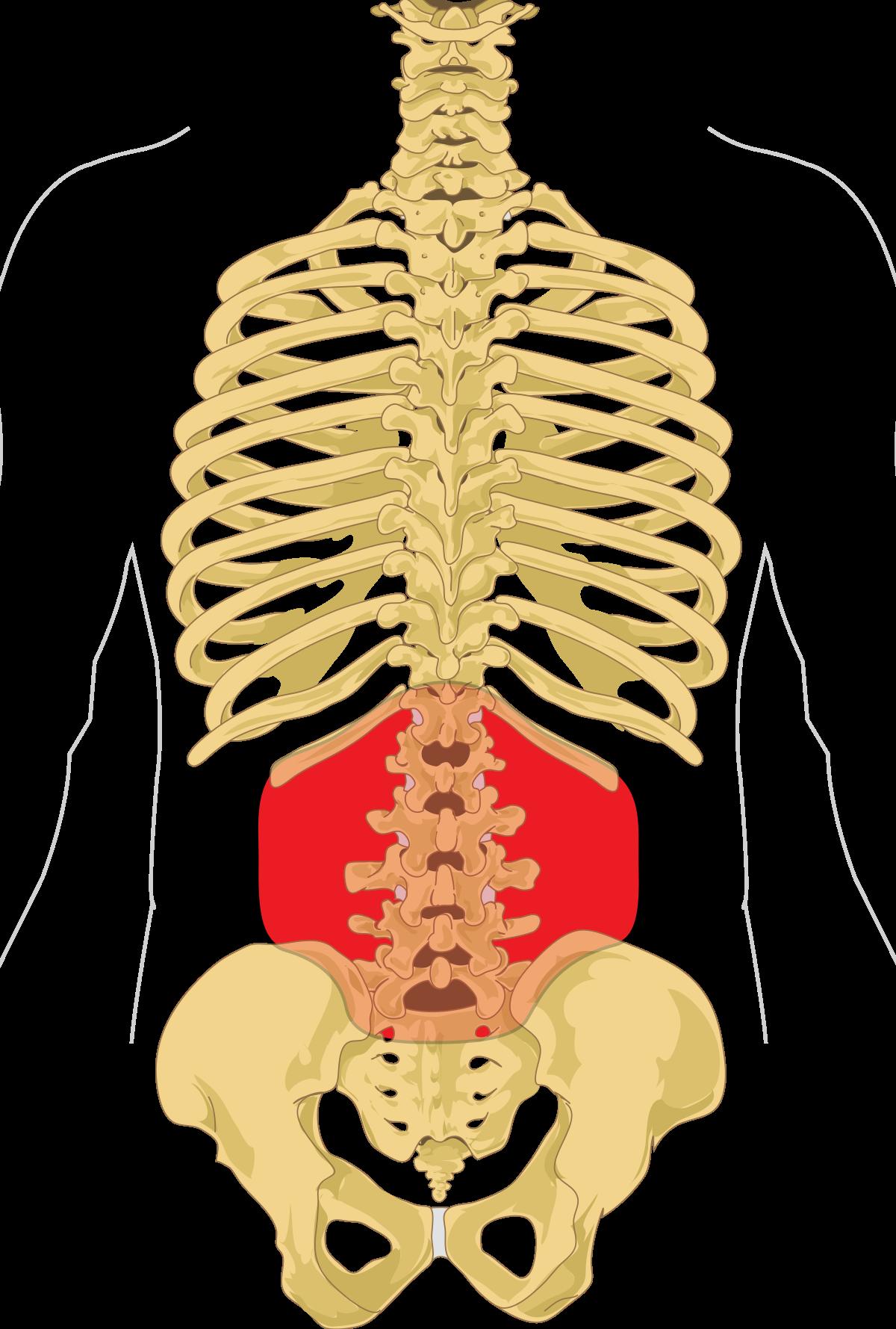 Tippek a térdfájás megelőzésére